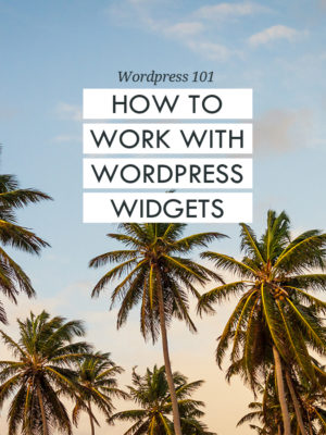 Wordpress 101 - How to work with Wordpress widgets