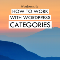 WordPress 101: How to work with WordPress categories