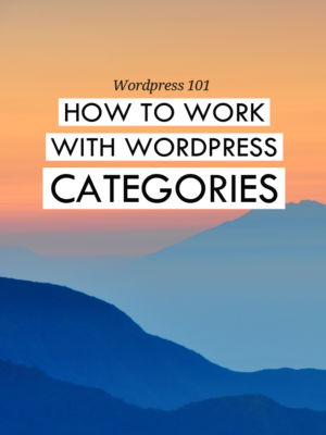 How to work with Wordpress categories