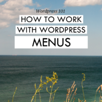 WordPress 101: How to work with menus